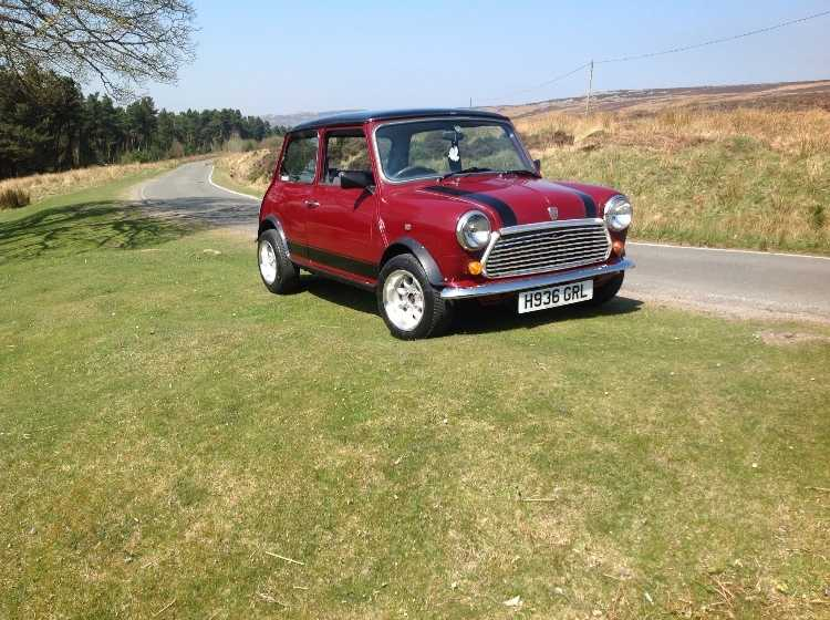 Mini Mayfair 1991