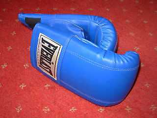 Brand new pair of EVERLAST Boxing gloves
